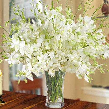 40 White Orchid Arrangement: Orchids Flowers