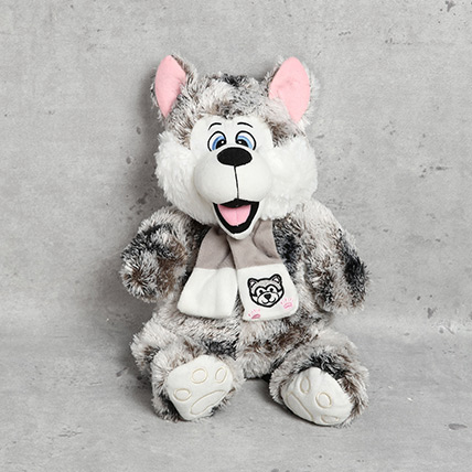 Cute Dog Soft Toy: Soft Toys