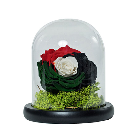 Impressive Uae Flag Colored Rose: Flowers for National Day
