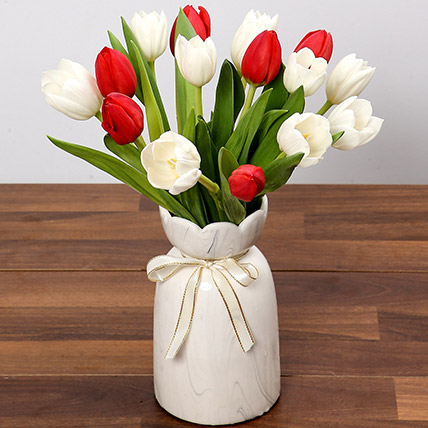Red and White Tulips: Tulips Flowers