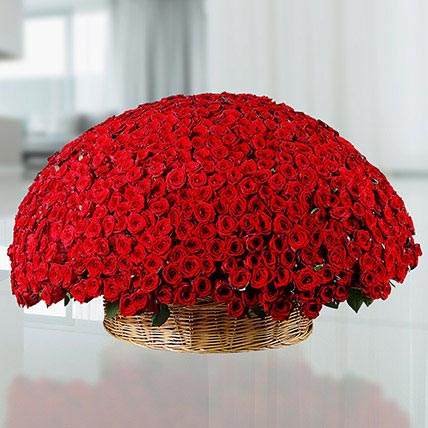 800 Red Roses Basket: Birthday Basket Arrangements