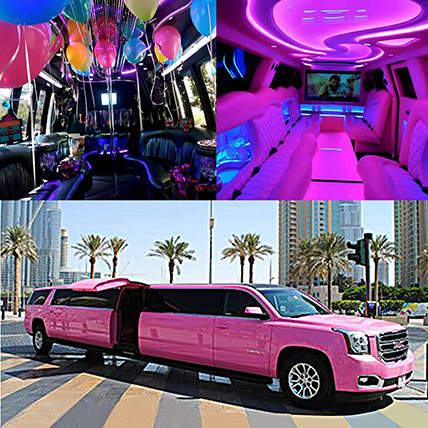 Royal Pink Limousine Experience: Party Supplies
