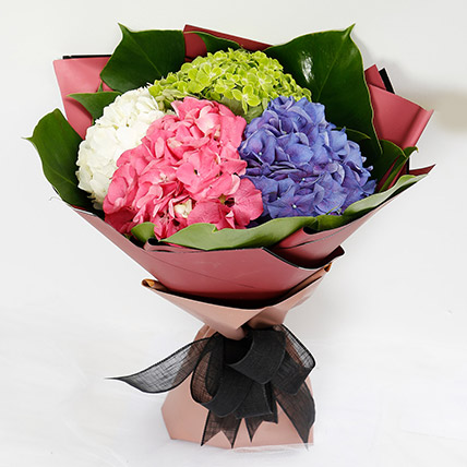 Beautiful 4 Colour Hydrangea Bouquet: Gifts for Librans