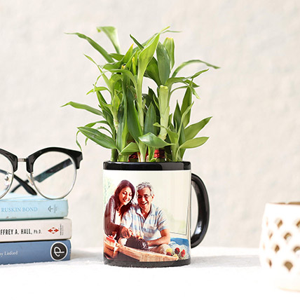 Lucky Bamboo In Personalised Black Mug: Personalised Combos