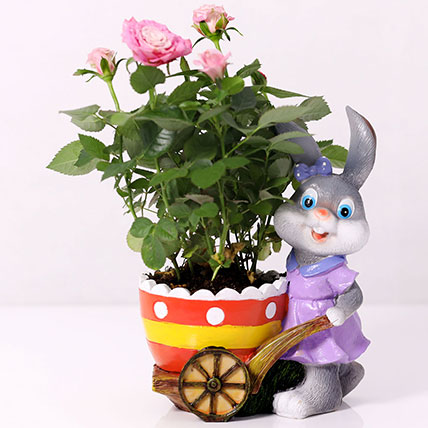 Pink Rose Plant In Rabbit Cart Pot: Flowering Plants