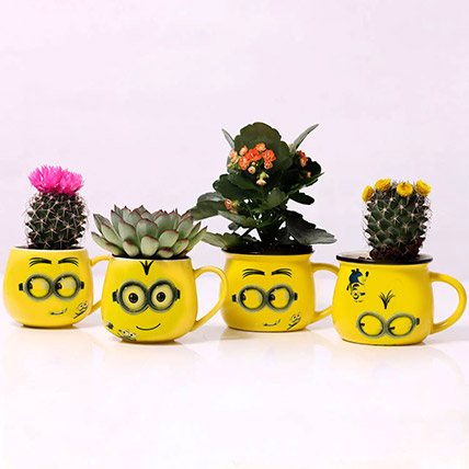 Set of 4 Plants in Emoticon Mugs: Desk Plants
