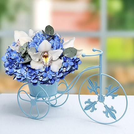 Blue N White Flowers In Cycle Basket: Flower Arrangements