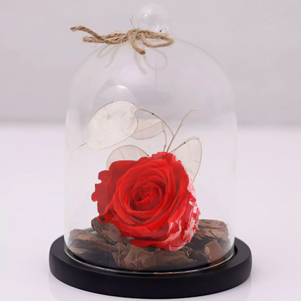 Red Forever Rose In Glass Dome: Singles Day Gifts