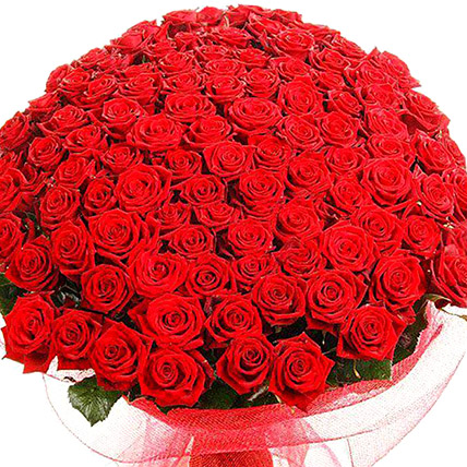 500 Red Rose Bouquet: Send Flowers To Pakistan